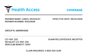 Private Insurance Example Health Access Card